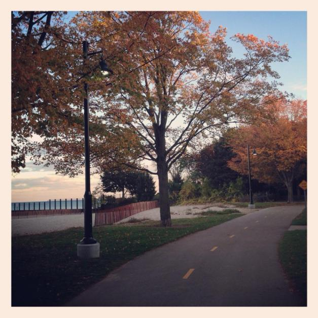 Evanston in the fall