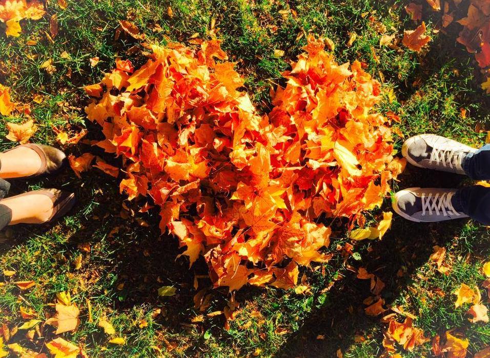 Thanksgiving_leaves